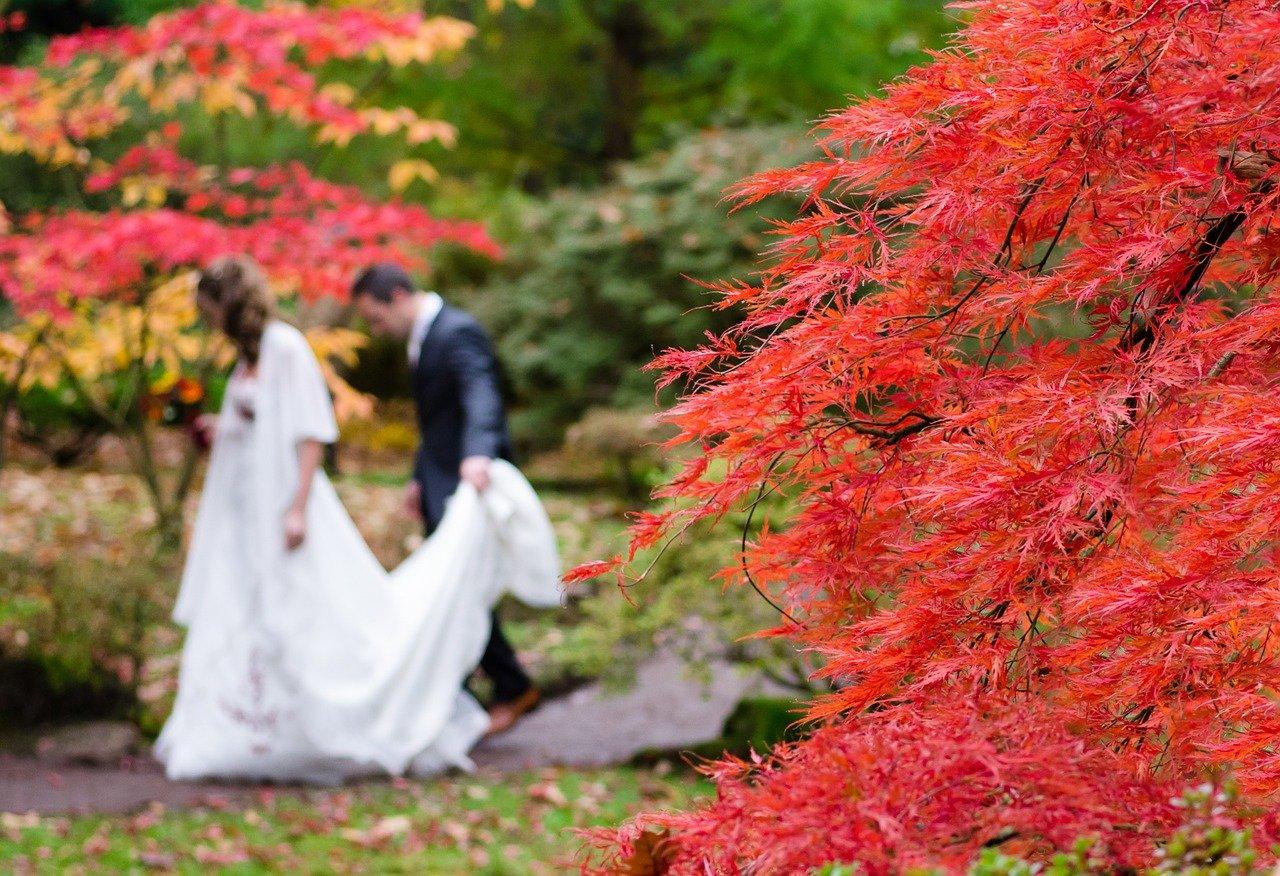 結婚式のお祝い金の相場は?縁起がいい数字とは?関係性や年齢によっても違いがある?